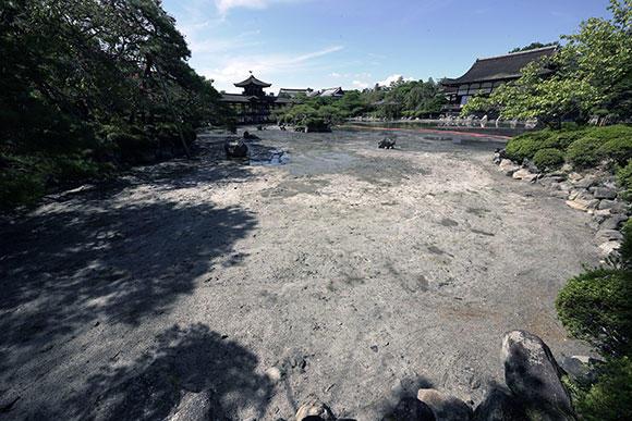 ヘドロは取り除かれ、砂地が覗く。ここがマルドブガイのすみかになり、イチモンジタナゴのゆりかごになる